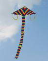 Giant Delta Rainbow Kite 84 in.