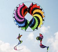 Circle Wing Kite 3-D 36 in.